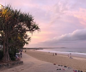 australia, lovely, and pink image