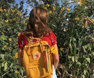 aesthetic, nature, and fjallraven kanken image