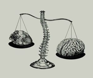brain, choice, and heart image