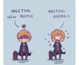 newt, wizarding world, and fantastic beast image