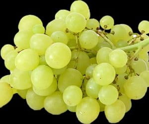 grape and grape png image