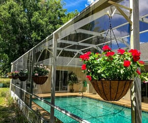 flowers, patio, and home image