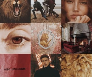 aesthetic, gryffindor, and harry potter image
