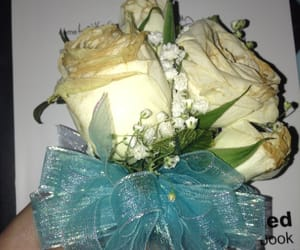 corsage and meh image