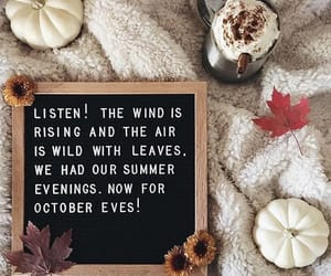 aesthetics, fall, and pumpkin image