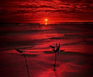 red and sunset image