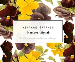 etsy, floral, and vintage flower image
