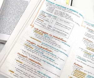 neat, notes, and pretty image