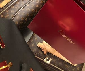 cartier, fly, and Louis Vuitton image