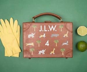 holiday, limes, and luggage image
