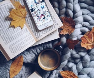 cozy, autumn, and book image