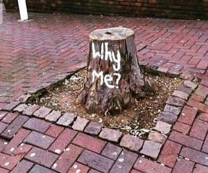 art, fun, and humour image