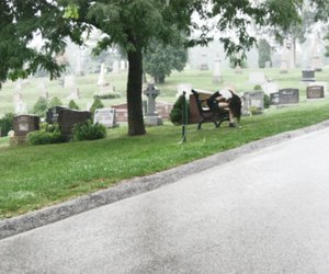 cemetery, creepy, and girl image