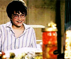 daniel, gif, and harry potter image