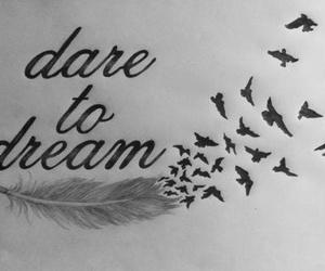 Dream, bird, and dare image