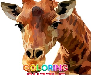 animal, giraffe, and orange image