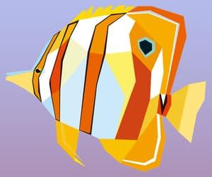 animal, blue, and orange image