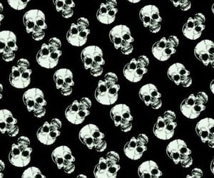 background, wall paper, and skulls image