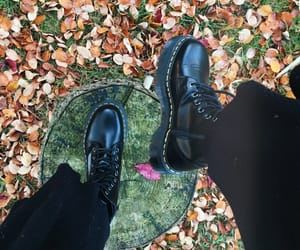 aesthetic, autumn, and docs image