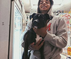 dog, rap, and rap fr image