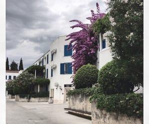 crna gora and Montenegro image