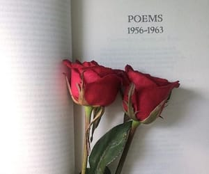 poem, book, and flowers image