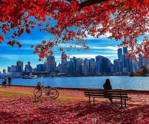 canada, autumn, and vancouver image