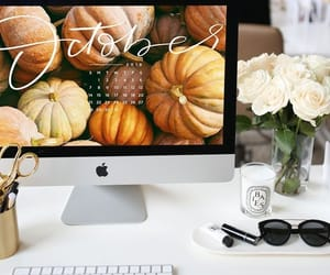 apple, autumn, and beauty image