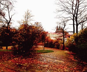 aesthetic, autumn, and church image