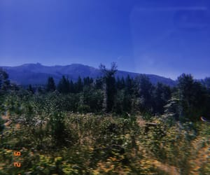 nature, mt rainer, and photography image