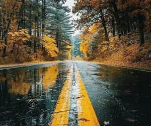 autumn, rain, and wallpaper image