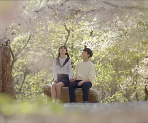 asian, cherry blossom, and couple image
