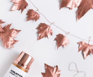 diy and autumn image