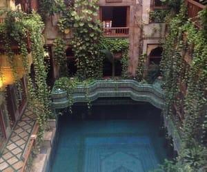 pool, travel, and plants image