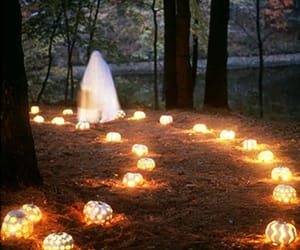 Halloween, ghost, and forest image