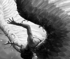 angel, wings, and aesthetic image