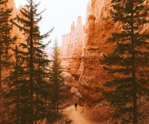 amazing, awesome, and nature image