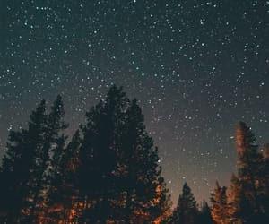stars, night, and trees image