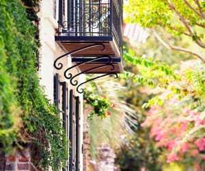 architecture, charleston, and flowers image