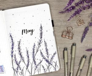 diy, flowers, and may image