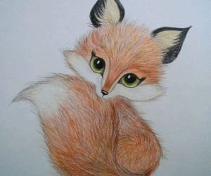 drawing and fox image