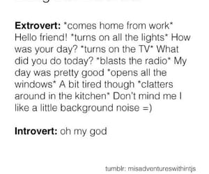 introvert, live, and noise image