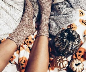 pumpkin, autumn, and chill image