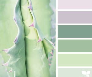 aesthetics, nature, and pastels image