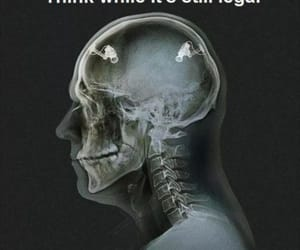 think, legal, and true image