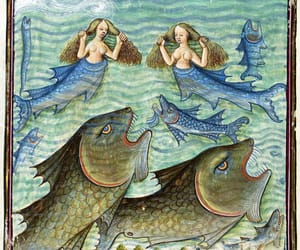 15th century, fish, and water image