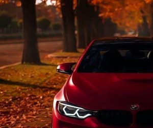 car, red, and autumn image