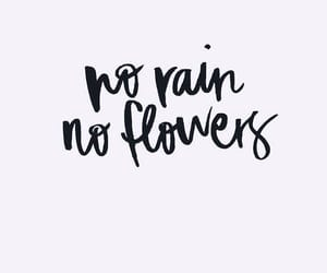 quotes, flowers, and rain image