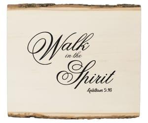 christian, faith, and spirit image
