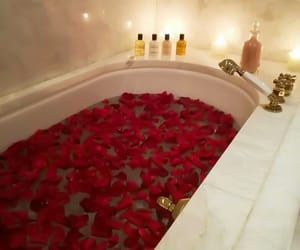 rose, red, and luxury image